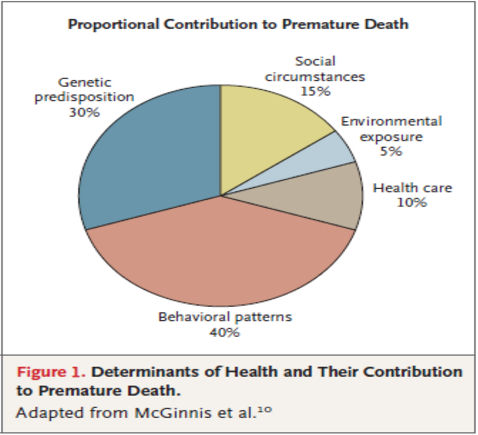 Proportional Contribution to Premature Death in Colorado - Determinants of Health and Their Contribution to Premature Death (McGinnis)