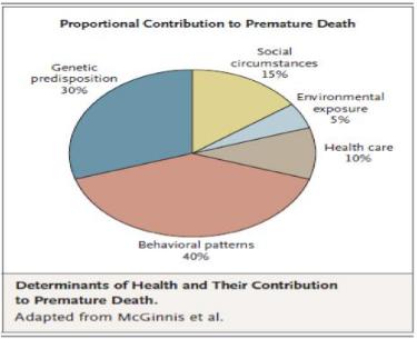 Figure 3: Proportional Contribution to Premature Death